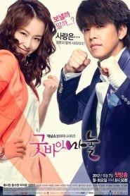 Goodbye Dear Wife Drama Episodes Watch Online